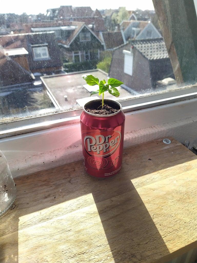 Dr. Pepper Sodacan Planter
