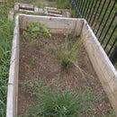 The Great Garden Renovation