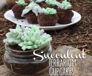 Edible Succulent Terrarium Cupcakes!