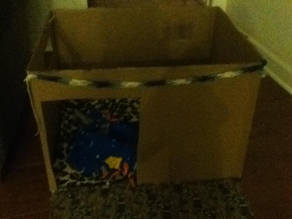 Makin' A Cardboard Doghouse