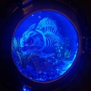Piranha Porthole Light