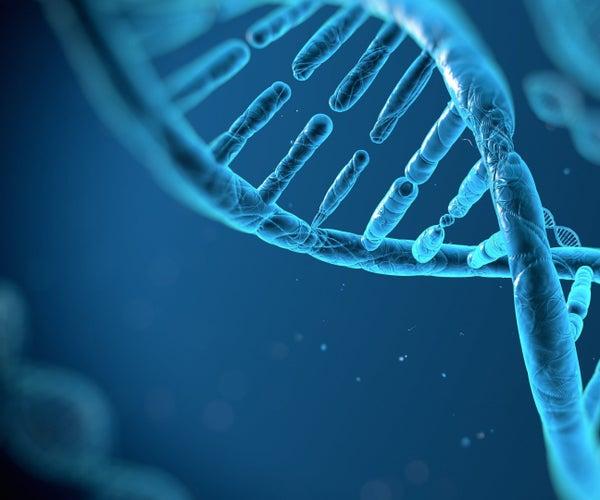 HumanDNAreassemblyusingdynamicprogrammingalgorithms
