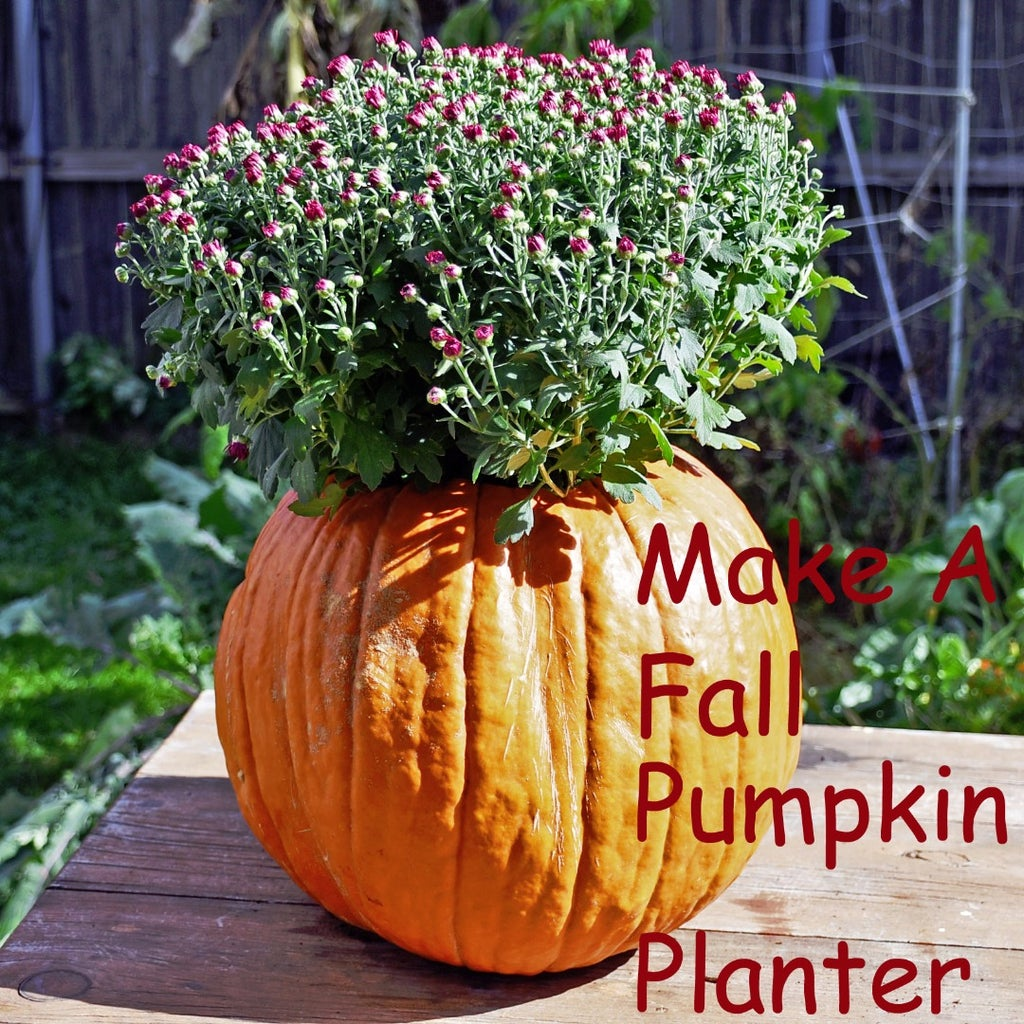 Festive Fall Pumpkin Planter