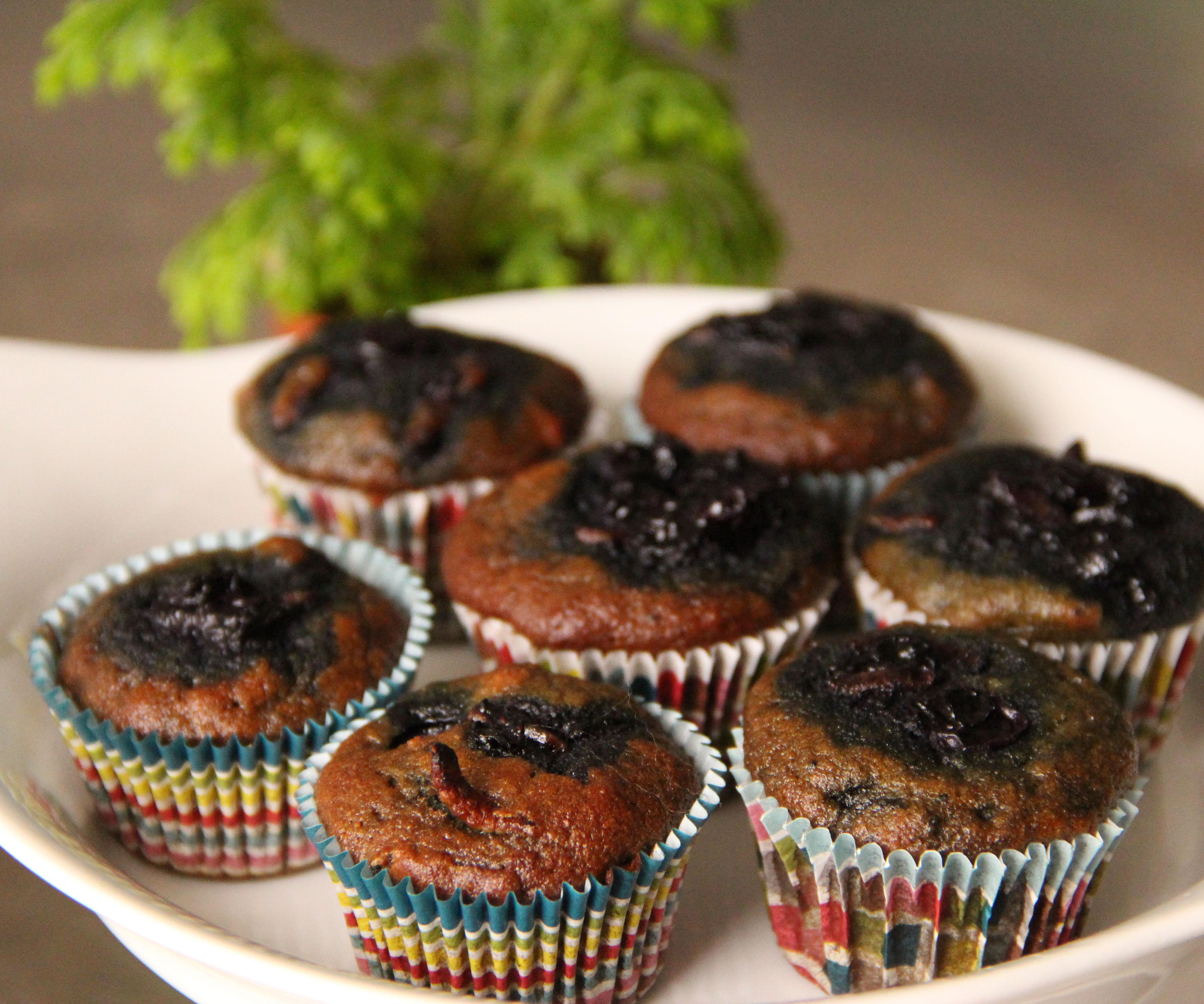 Blueberry Grub Muffins. Gluten Free