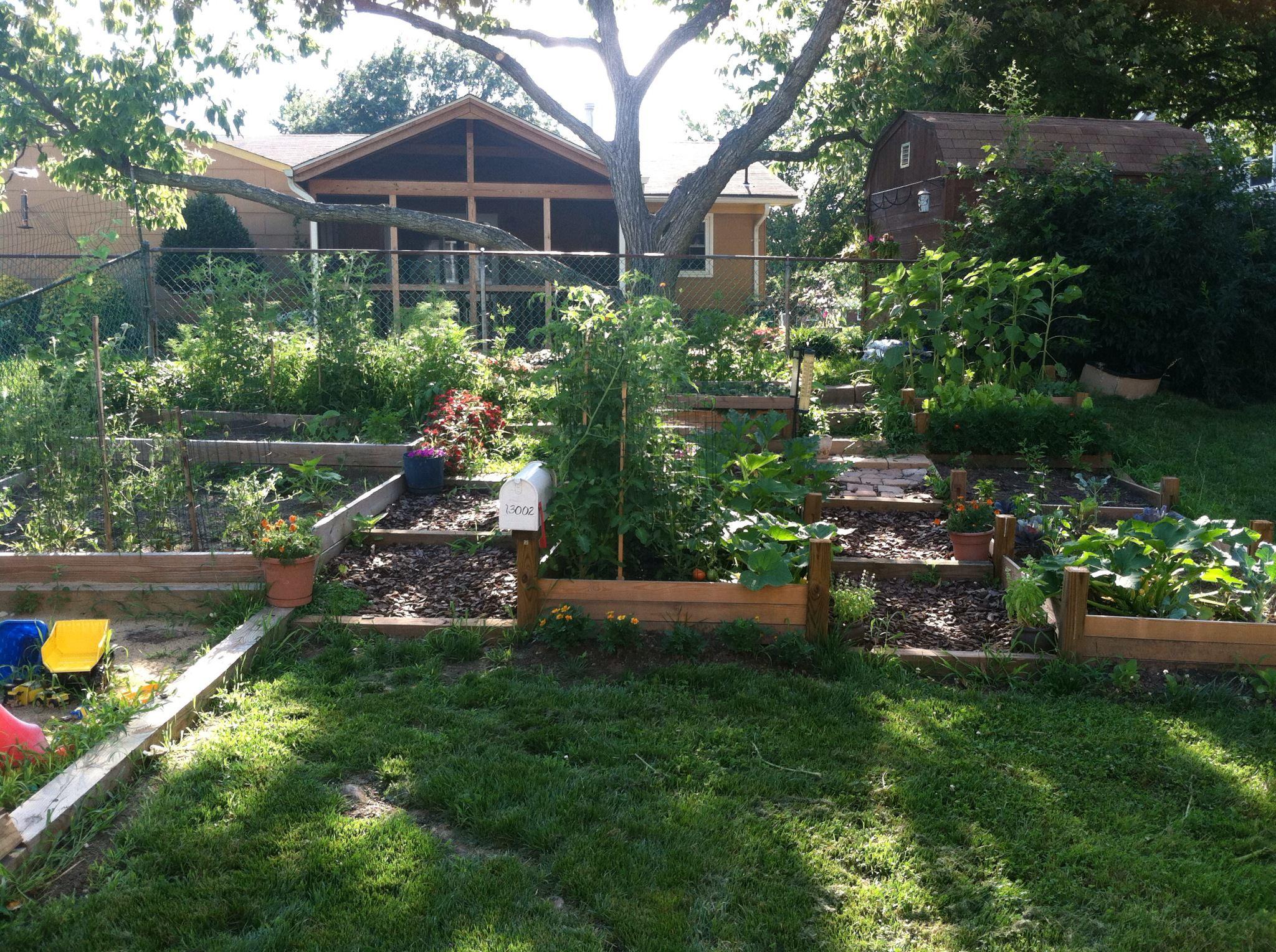 Building a raised garden into a hillside.