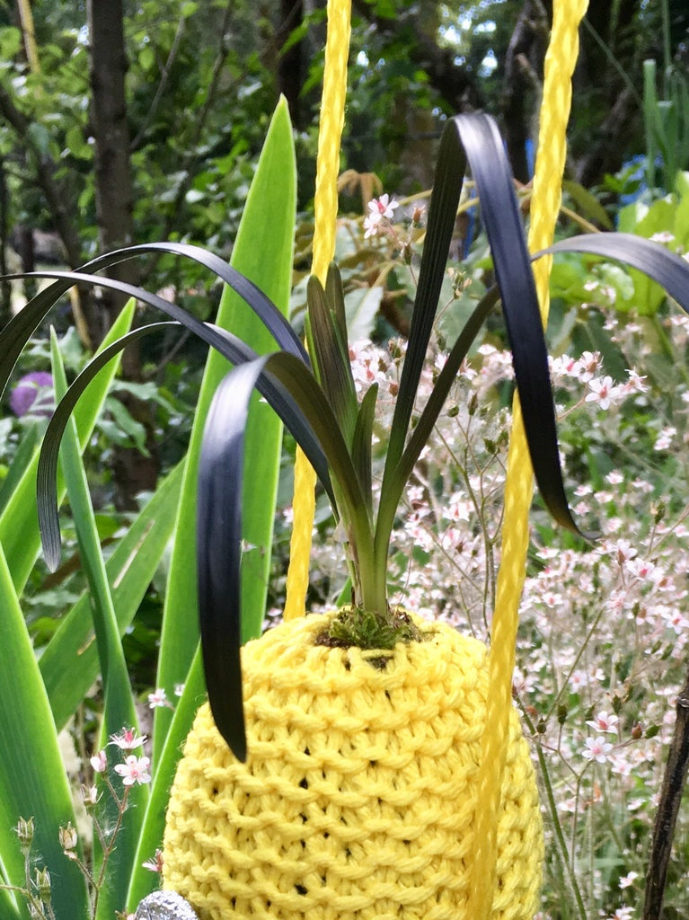 Hanging Minion Planter Bag With Growing Hair.