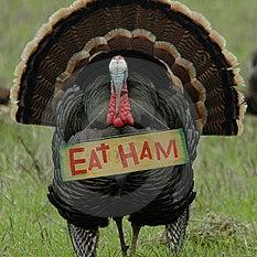eat_ham.jpg