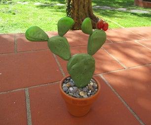 Pebble Cactus