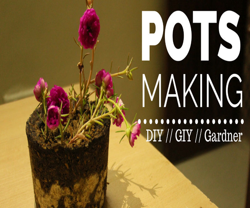 Pots Making // 9 O'clock Plant // GIY // Gardner Stuff