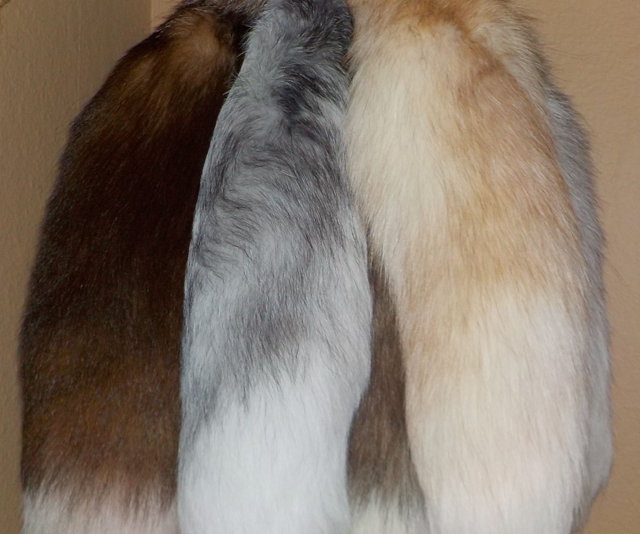 Real Fur Tail Keychain