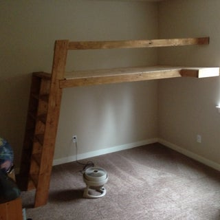 Loft Beds With Bookshelf Ladders