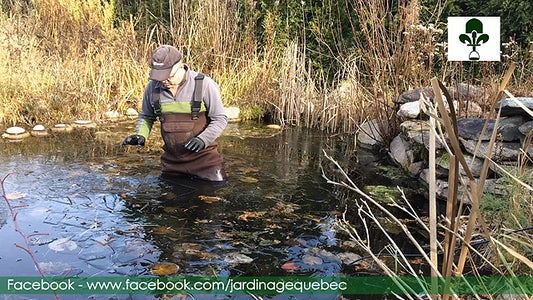 Placing De-icer in the Bottom of Your Pond