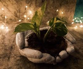Hands Saving Greenery