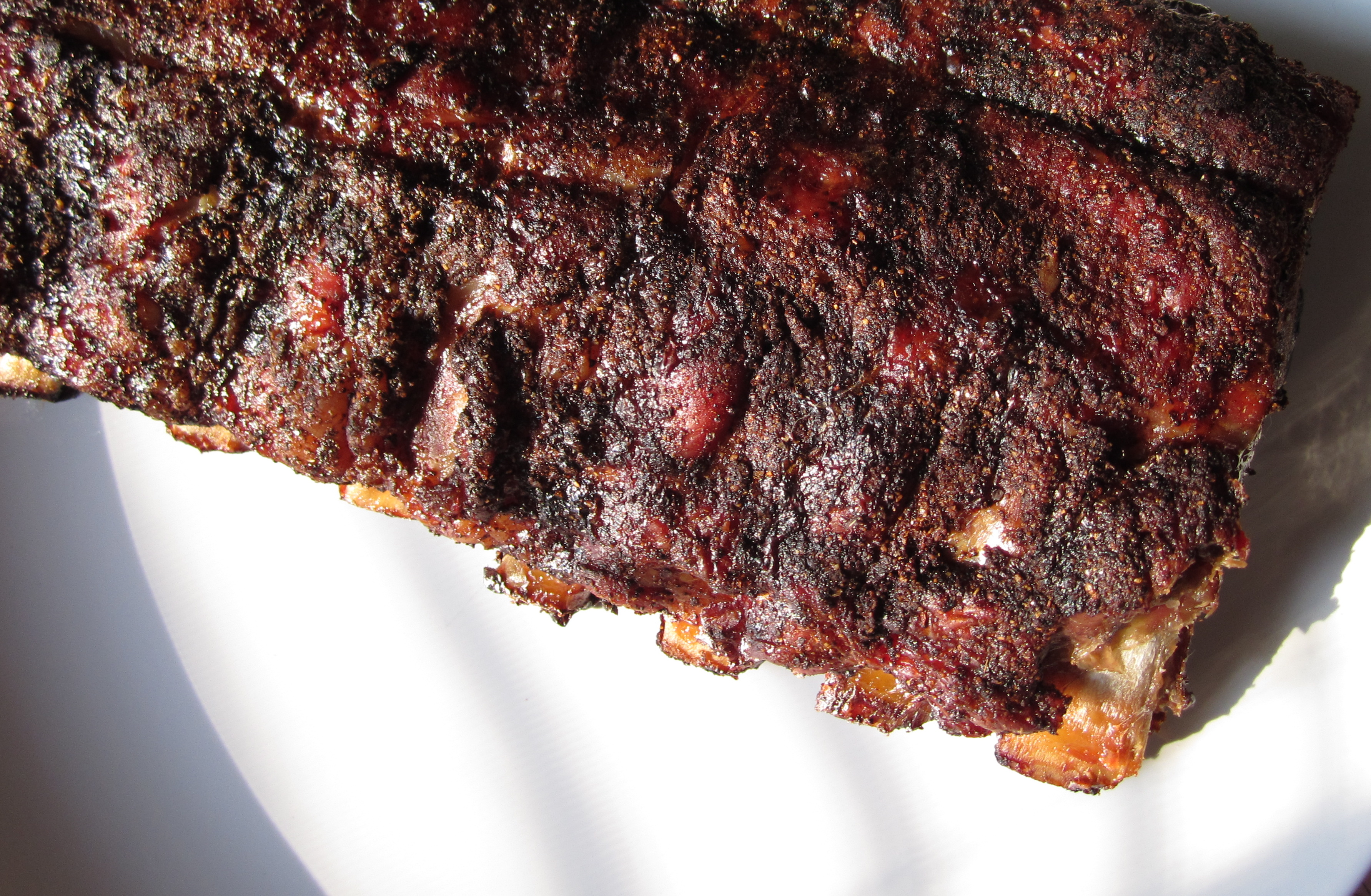 oven cooked ribs with dry rub