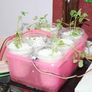 Multipurpose Hydroponics and Soil Gardening Solution