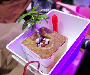 Tabletop Hydroponics With 3D Printed Ebb and Flow Fittings