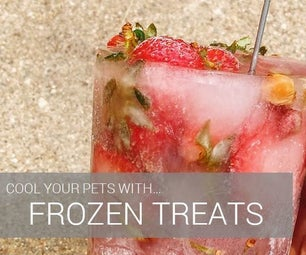 How to Cool Pets With Frozen Treats