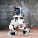 Arduino Controlled Robotic Biped