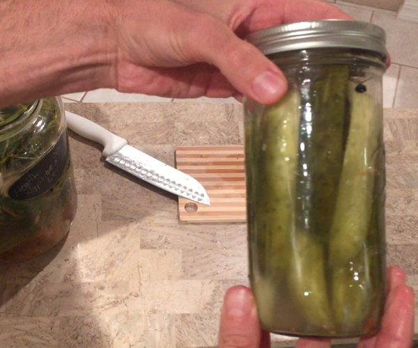How to Easily Make Fermented Dill Pickles & the Benefits Of