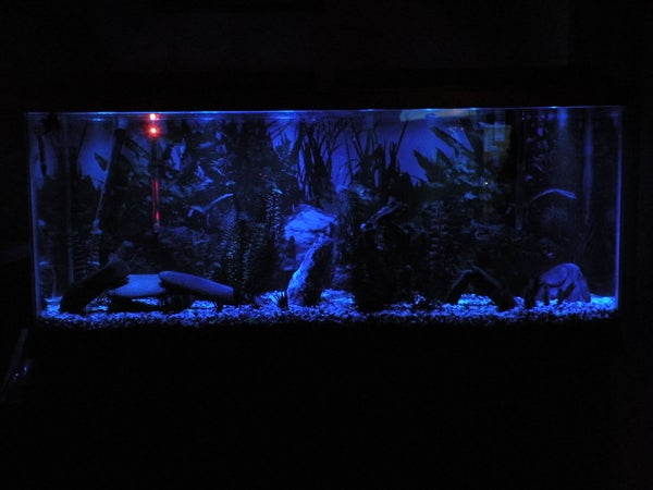 LED Aquarium Moonlights
