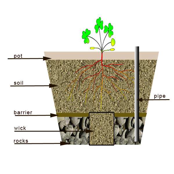 How to make a self watering container