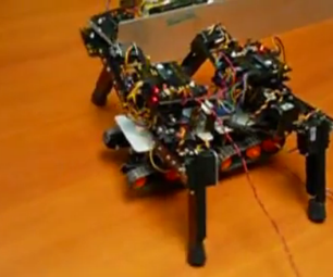 4 Legged Robot Transformation (2 Robots Merging Into 1)
