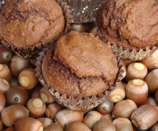 Acorns to Acorn Muffins in 1 Day!