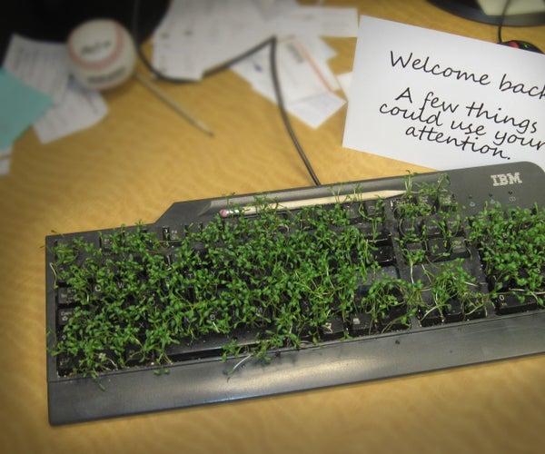 Grow a Keyboard