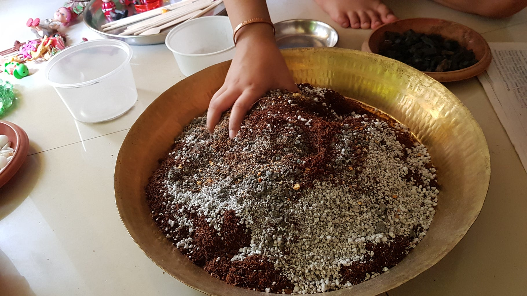 Soil Mixing for Succulents and Cactus