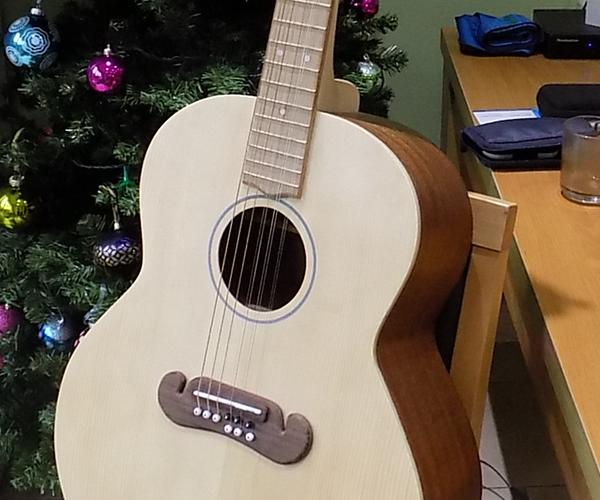 9-string Acoustic Guitar