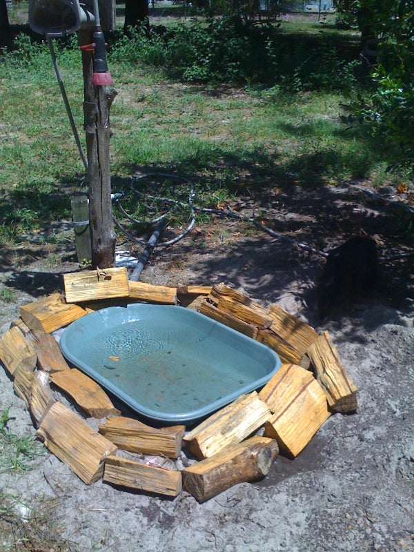 Zeevah's Elite Doggie Swimming Pool / Water Bowl / Bird Bath