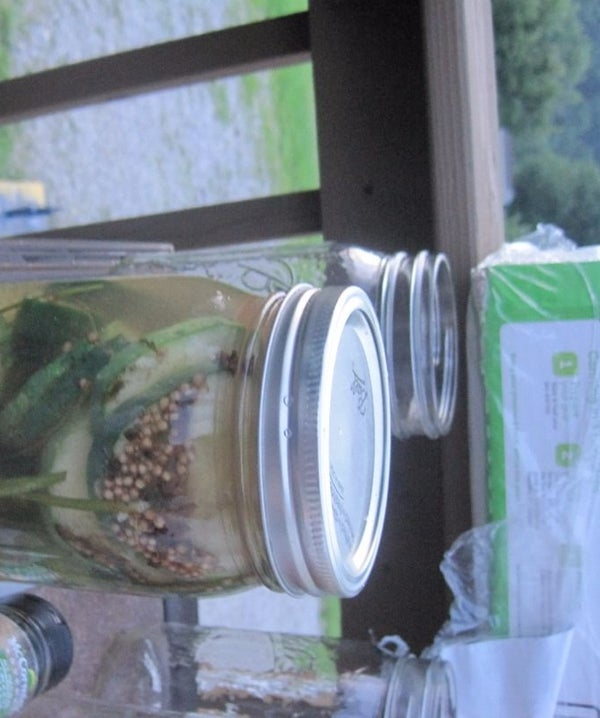 Homemade in the Jar Pickles