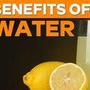 Beneficios del agua de limón ||  Agua de Limon con Miel