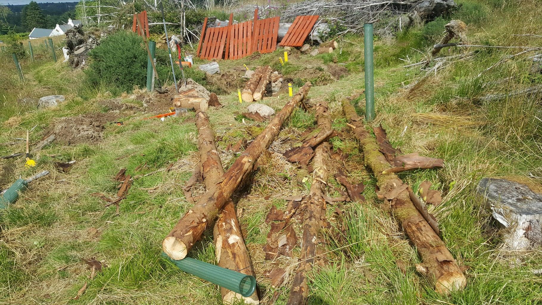 Debarking and Laying of the Log Beams