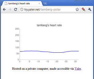Web-enabled Polar Heart Rate Monitor