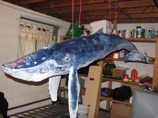 6 Foot Paper Mache' Humpback Whale