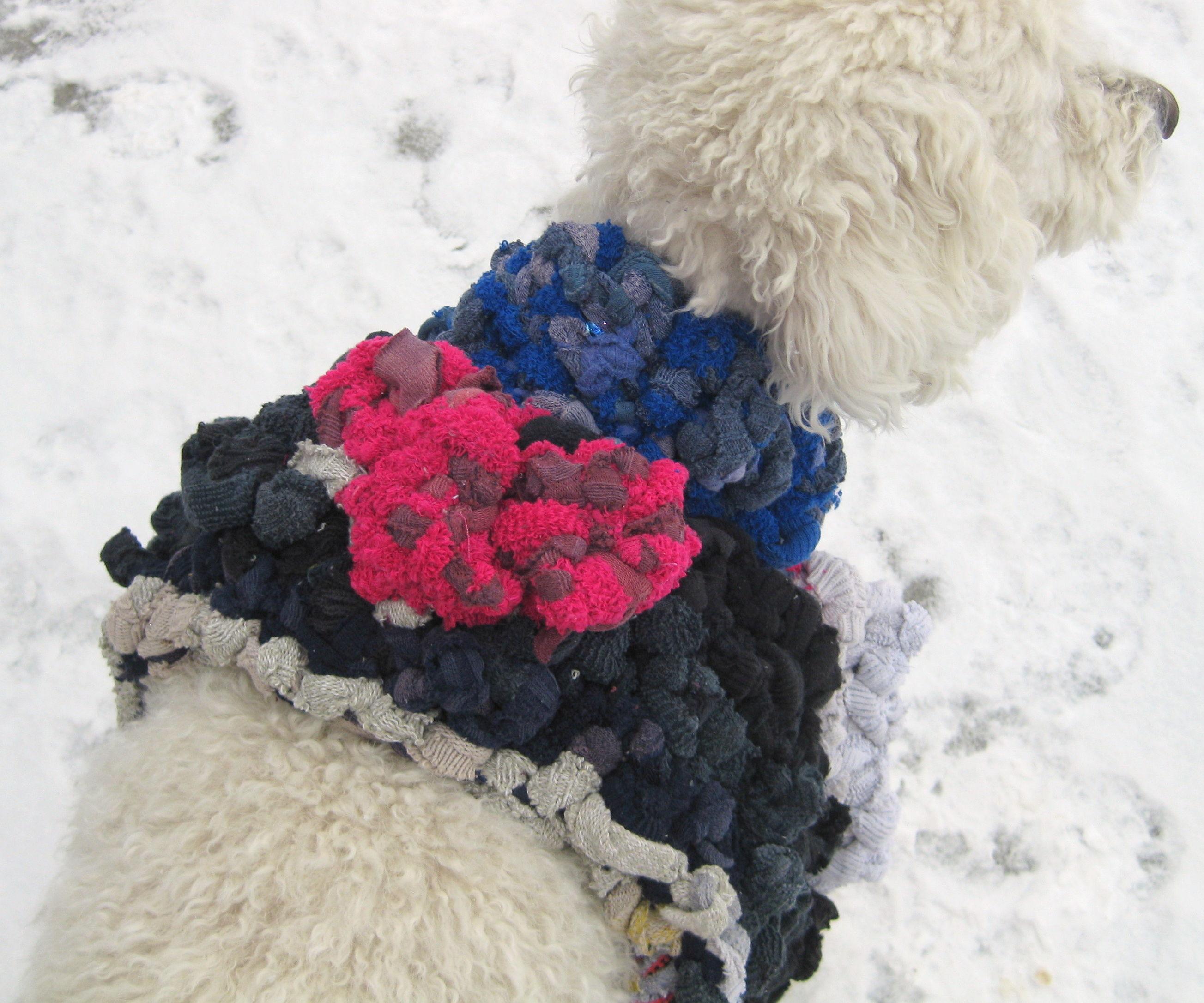 Crochet Dog Sweater from Old Socks