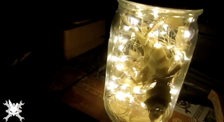 Diy Fairy Light Mason Jar W Leaves 6 Steps With Pictures Instructables