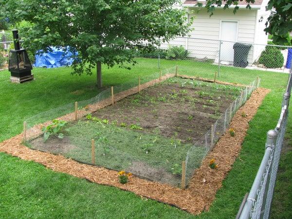 Garden Aesthetics Improvement