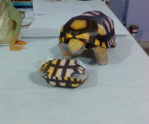 Mecatronic Tortoise
