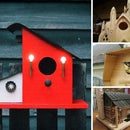 Top 10 Ultimate Birdhouses