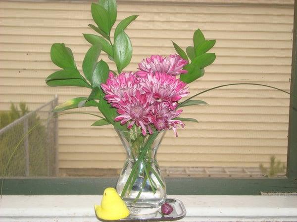 Fresh Cut Flower Preservative