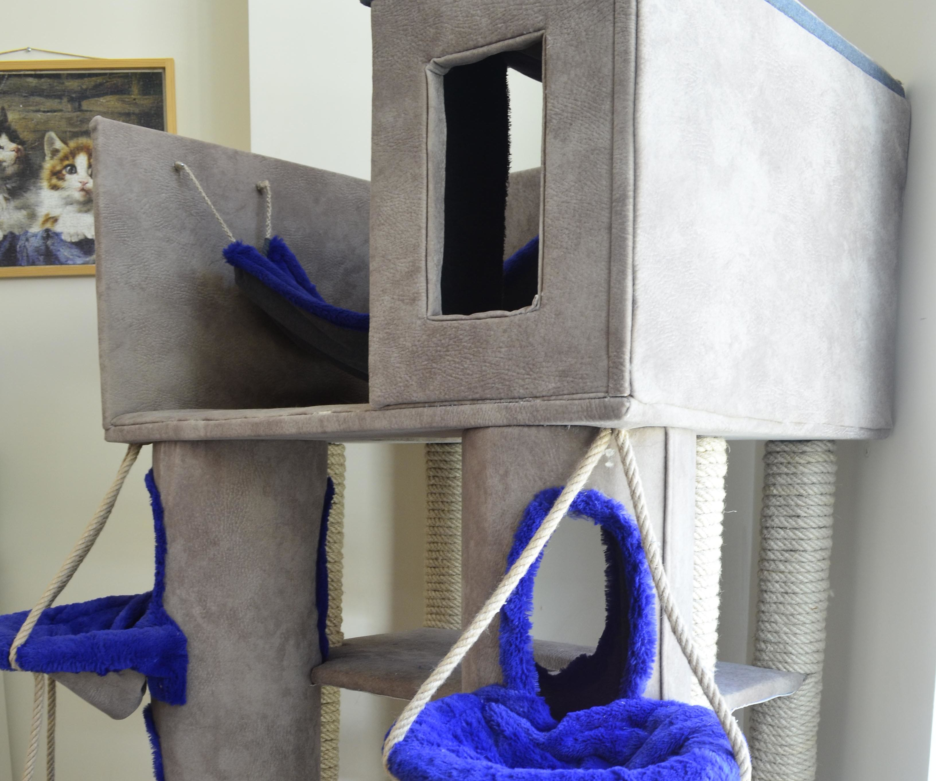 Castle of Cats