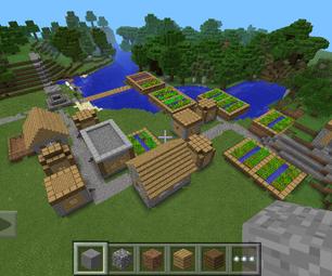 Village Seed