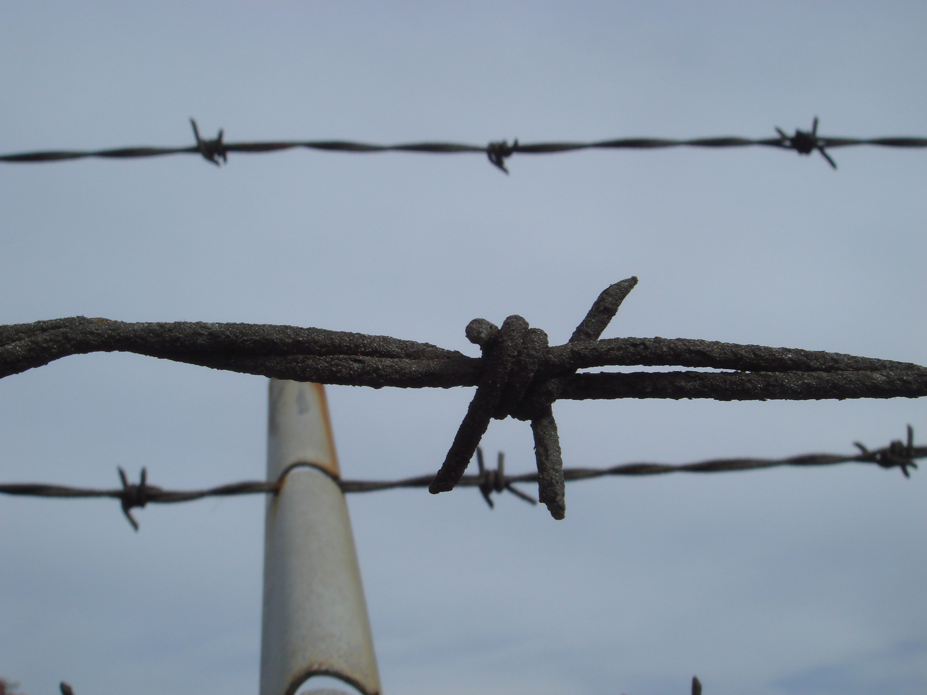 Get Over a Barbed Wire Fence