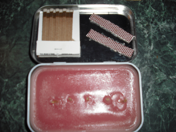 Altoids Tin Emergency Candle