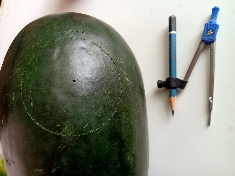 Melon Bowl - Step2