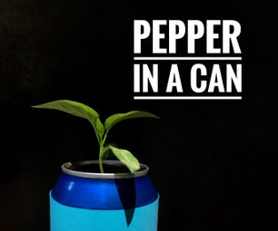 Upcycled Soda Can Planter -Pepper in a Can