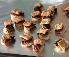 Mini S'mores Dessert Recipe