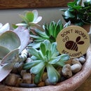 Wood Plant Pot Stakes With Cricut Iron-On